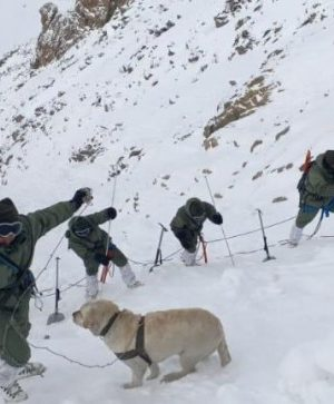 ladakh_avalanche-647×363.jpeg