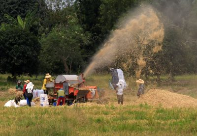 2018-04-23T060116Z_636846600_RC14C03D96D0_RTRMADP_3_GLOBAL-AGRICULTURE-400×277.jpg