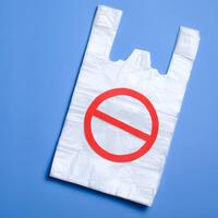 plastic_bag_june13_shutterstock.jpg