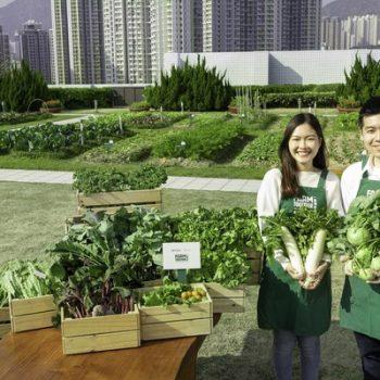 sky_farm_produce.jpg